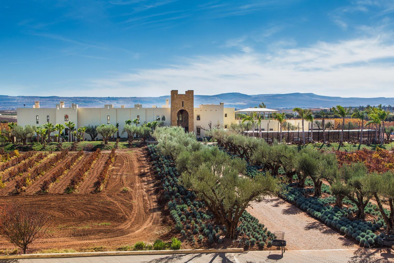 wine tasting outside of Meknes-Morocco