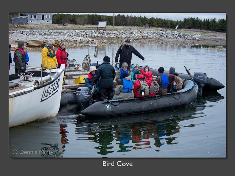 Zodiac excursion Bird Cove (D. Minty photo)